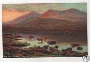 IRELAND-CLOANE-LAKE-GLENCAR-Artist-E-LONGSTAFFE-Postcard
