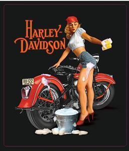 Harley-Davidson-Fifties-Pinup-girl-Sign-Washing-a-Vintage-Harley-Sportster-XR