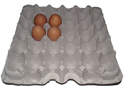 6 Chicken Egg Cartons Paper Trays Flats Hatching Craft Poultry