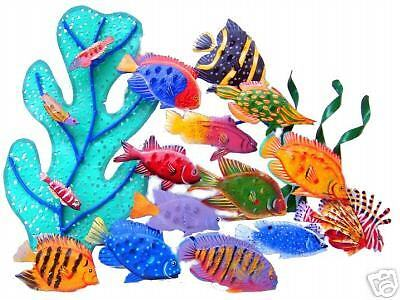 Coral Reef Creations