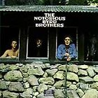 The Byrds - Notorious Byrd Brothers (1997)