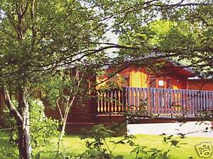 New Forest coast Holiday Lodge sleeps 6. 5* site