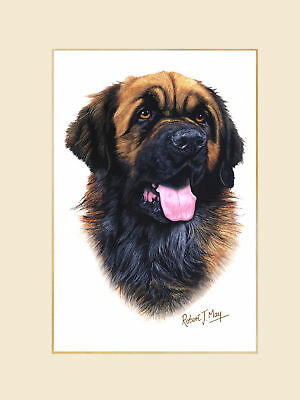 Original Leonberger Painting by Robert May