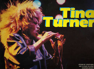 TINA TURNER  THE ENTERTAINERS   ( 1986 VINYL LP ITALY )