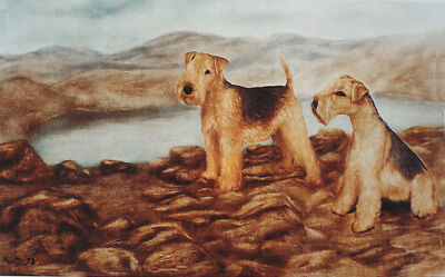 LAKELAND TERRIER DOG FINE ART LIMITED EDITION PRINT