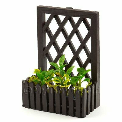 Garden Plants In Box+trellis Dolls House Miniatures Tb2