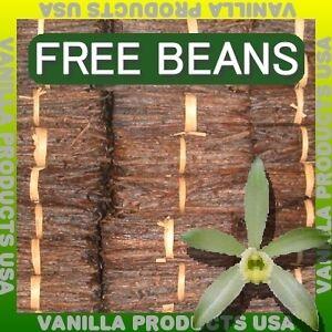 1-ONE-LB-Madagascar-Bourbon-Org-Extr-Vanilla-Beans-6-7-034