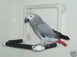 Parrot Birds Shower Window Perch Stand 3 side ALL birds