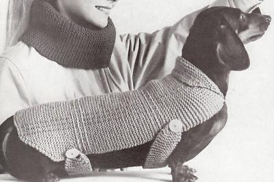 Vintage Knitting Pattern To Make Dog Coat Blanket Sweater Dachshund