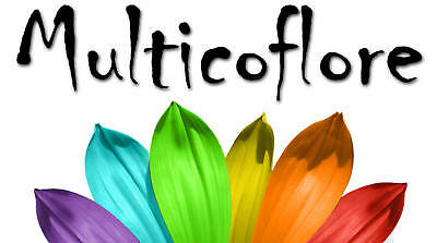 Multicoflore