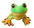 Stuffed Animals - Webkinz: Webkinz Tree Frog