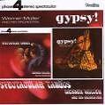 Spectacular Tangos/Gypsy! von Werner Müller (2007)