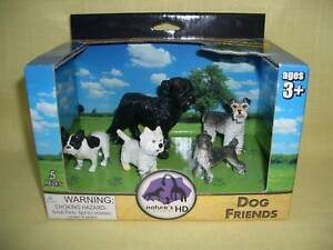 -SCHNAUZER-BOSTON-TERRIER- J 'n L Boston Terriers