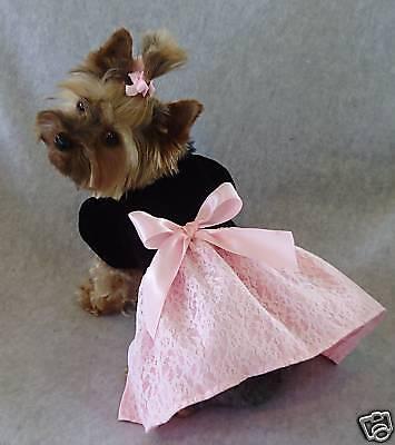 Xxxs Black Velvet Pink Satin Dog Dress Clothes Gown Pc Dog®
