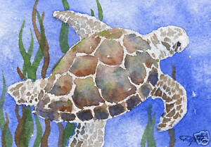 SEA-TURTLE-ACEO-Miniature-Art-Print-on-W-C-Paper-Signed-by-Artist-DJR