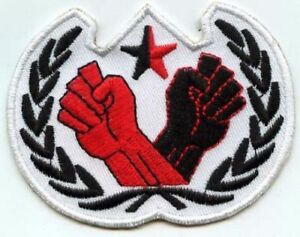 TWO-FISTS-PATCH-MBP-066