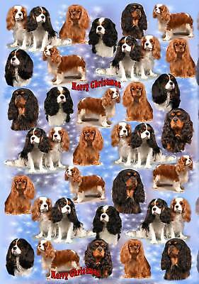 Cavalier King Charles Xmas Wrapping Paper By Starprint - Auto combined postage