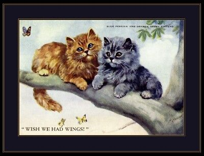 English Picture Persian Tabby Kitten Cat Kittens Cats Poster Vintage Art Print
