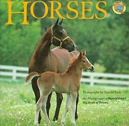 Horses-pictures-nonfiction-Photos-Reading-Railroad-kids