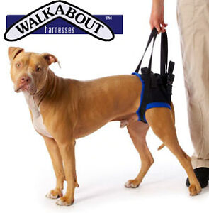 Rear-Lifting-Dog-Harness-Used-Walkabout-Rear-Harness