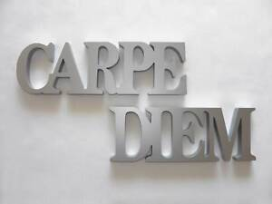 schriftzug carpe diem wandtattoos wandbilder ebay. Black Bedroom Furniture Sets. Home Design Ideas