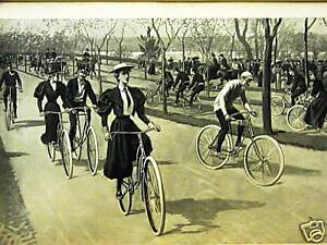 BICYCLING RIVERSIDE DRIVE NYC BICYCLE 1894 Antique Art Print Matted