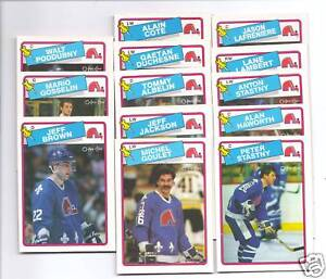 1988-89 OPC QUEBEC NORDIQUES  NRMT CARD LOT