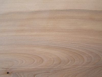 Assorted-North-American-Wood-Samples-1-2-x-3-x-6