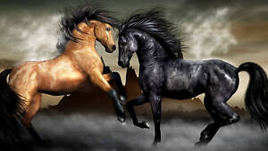 LARGE HORSES CANVAS PICTURE HORSE ANIMAL WALL ART 36x20