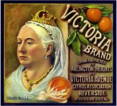 Riverside English British Queen Victoria Orange Citrus Fruit Crate Label Print
