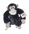 Stuffed Animals - Webkinz: Webkinz Signature Chimpanzee