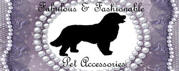 Fabulous and Fashionable Pet