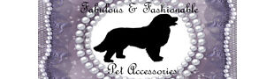 Fabulous and Fashionable Pet