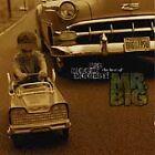 Mr. Big - Big, Bigger, Biggest! (the Best of , 1997)