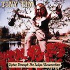 Tiny Tim - Tiptoe Through the Tulips (Resurrection, 1987)