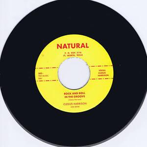 CLEDUS-HARRISON-ROCK-N-ROLL-IN-THE-GROOVE-WILD-BLACK-ROCKER-ROCKABILLY