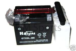 Atv quad go kart 12 volt battery 5ah parts gt5l bs parts for 12 volt motor go kart