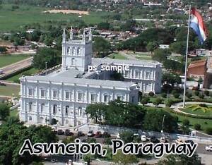 Paraguay-ASUNCION-Travel-Souvenir-Fridge-Magnet