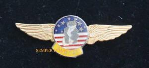 TOPGUN-F-14-TOMCAT-PILOT-LARGE-XL-GOLD-WING-PIN