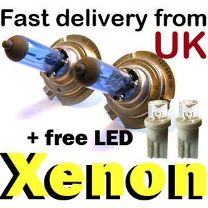 XENON 55W SUPER WHITE H7 499 Headlight Bulbs 12V