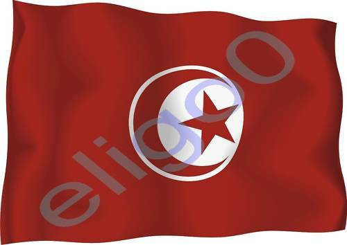 1x tunisia sticker waving flag bumper decal