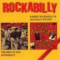 Rarest Rockabilly & Hillbilly von Various Artists (1991)