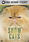 The Standard Of Perfection - Show Cats (DVD, 2006, Closed Caption Widescreen)