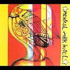 Everything Is [Single] by Neutral Milk Hotel (CD, Jan-2007, Orange Twin)