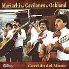 Mariachi Los Gavilanes de Oakland - Corrido del Mono (2005)