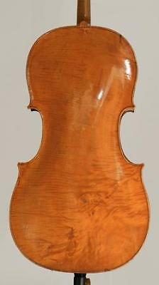 A very fine old Italian cello by Carcassi,Florence,1770 on Rummage