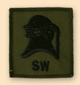 NEW-OFFICIAL-Diver-S-W-badge-subdued