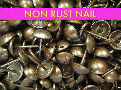 250 LARGE 19mm UPHOLSTERY NAILS Brass on steel studs