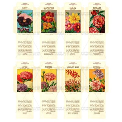 8 Dolls House Flower Seed Packets (set 6)