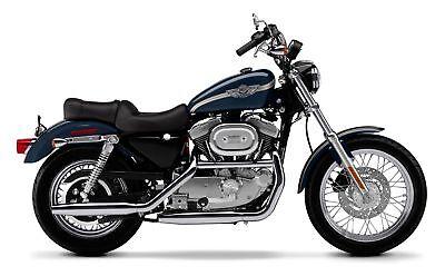03 Anniversary Sportster Tank Stripe 4 Harley Davidson